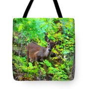 Can I Help You My Deer Tote Bag