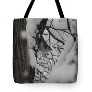 Can You See Me Tote Bag