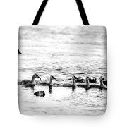 Canada Geese Family II Bw Tote Bag