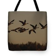 Canada Geese Fly In A Group Tote Bag