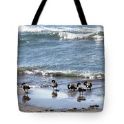 Canada Geese In Lake Erie Tote Bag