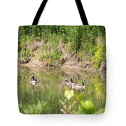 Canada Geese On Pond Tote Bag