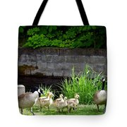 Canada Geese With Goslings Tote Bag