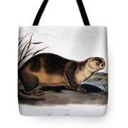 Canada Otter, 1846 Tote Bag