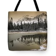 Canadian Rocky Mountains Dusted In Snow Tote Bag by Tim Fitzharris