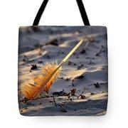 Canaveral National Seashore Tote Bag
