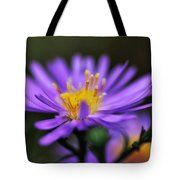 Candles On A Daisy Tote Bag
