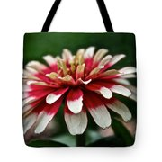 Candy Color Zinnia Tote Bag