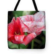 Candy Stripers Tote Bag