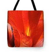 Canna Closeup Tote Bag by Susan Herber