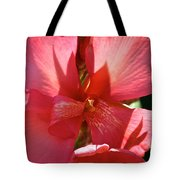 Canna Lily Close Up Tote Bag