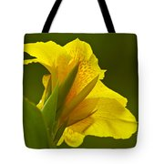 Canna Lily Tote Bag