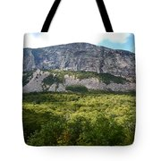 Cannon Cliff From Boise Rock New Hampshire Tote Bag