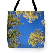 Canopy Tote Bag