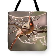 Can't Hide Class Tote Bag