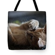 Can't Stop Spinning Tote Bag