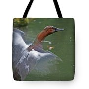 Canvasback In Action Tote Bag