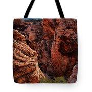Canyon Glow Tote Bag by Rick Berk