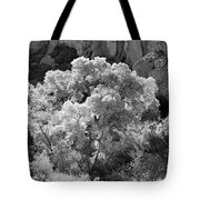 Canyon Treasure Tote Bag