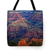 Canyon View X1 Tote Bag