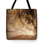 Canyon Wall Tote Bag