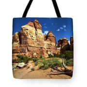 Canyonlands Chesler Park Tote Bag