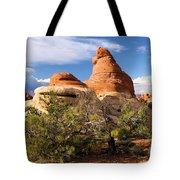 Canyonlands Needles Tote Bag