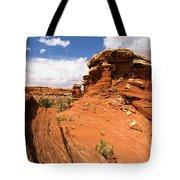 Canyonlands Textures Tote Bag