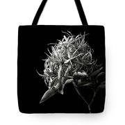 Cape Chestnut In Black And White Tote Bag