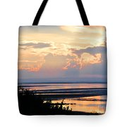 Cape Cod Beach Brewster Tote Bag