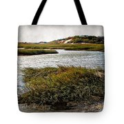 Cape Cod National Seashore Tote Bag