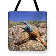 Cape Flat Lizard  South Africa Tote Bag by Piotr Naskrecki