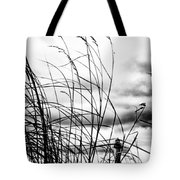 Cape Of Darkness Tote Bag