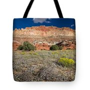 Capitol Reef Autumn Wildflowers Tote Bag