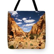 Capitol Reef Cohab Canyon Tote Bag