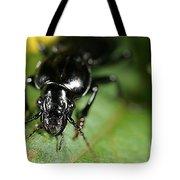 Carabid Beetle Rootworm Rredator Tote Bag