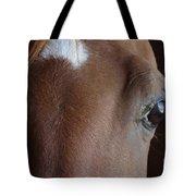 Caravaggio 02 Tote Bag