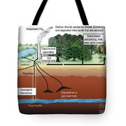Carbon Dioxide Sequestration Tote Bag by ORNL/Science Source