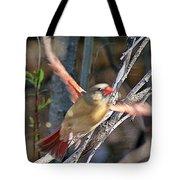 Cardinal 4 Tote Bag