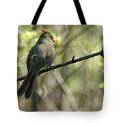 Cardinal 5 Tote Bag