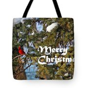 Cardinal Christmas Card Tote Bag