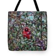 Cardinal Feb 2012 Tote Bag