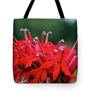Cardinal Flower Close Up Tote Bag