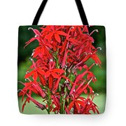 Cardinal Flower Full Bloom Tote Bag