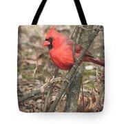 Cardinal In A Bush Tote Bag