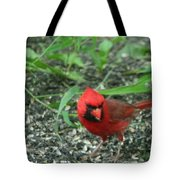 Cardinal In Springtime Tote Bag