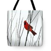 Cardinal In Willow  Tote Bag