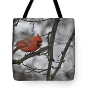 Cardinal Male 3666 Tote Bag