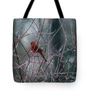 Cardinal On Ice Tote Bag