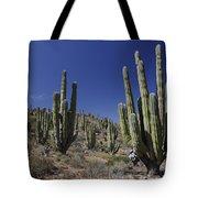 Cardon Pachycereus Pringlei Cacti Tote Bag